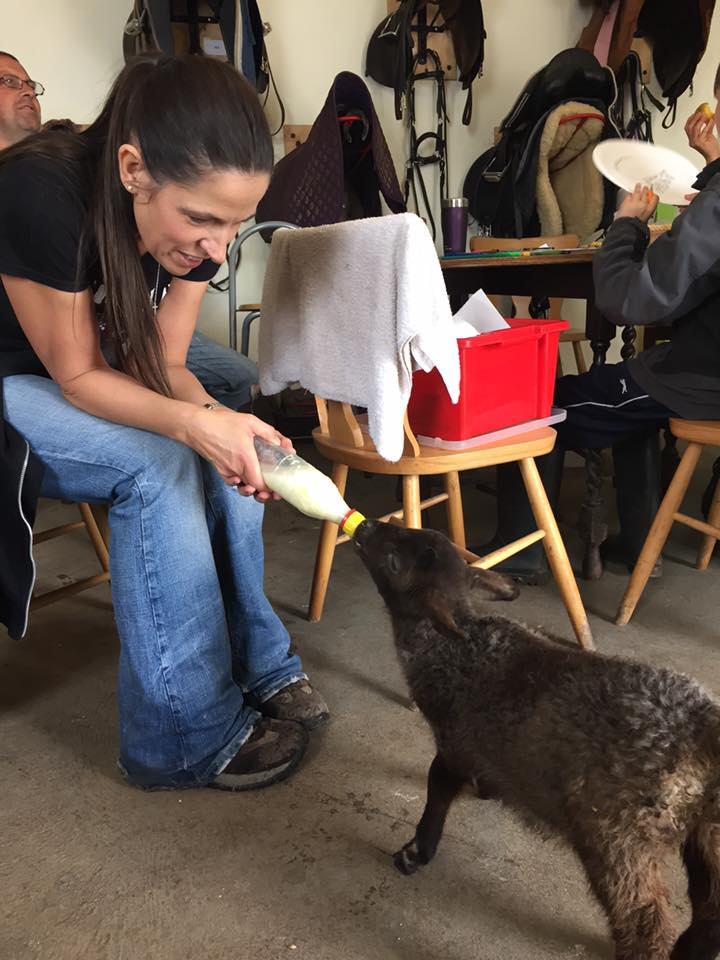 Lynn feeding lamb