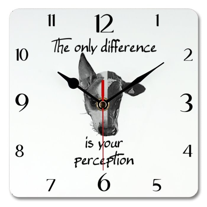 Only Difference Is Your Perception clock