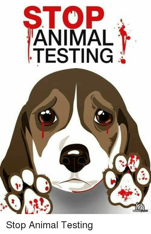 top-animal-testing-stop-animal-testing-14223279